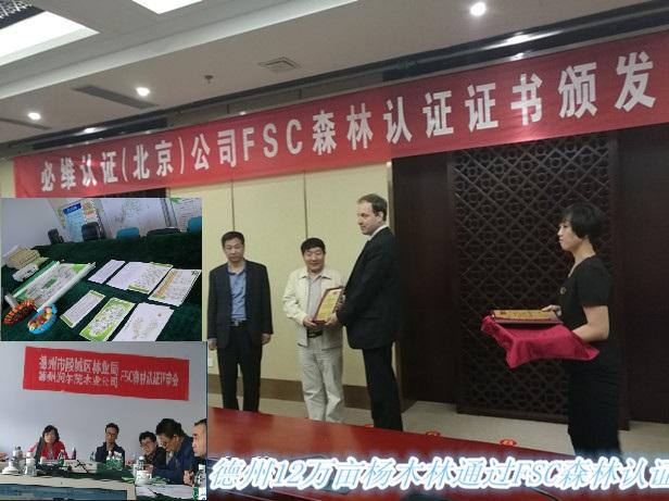 亚博娱乐pt客户端_德州12万亩杨树林亚博国际娱乐颁奖仪式