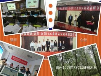 亚虎娱乐_德州12万亩杨木林通过FSC联合认证